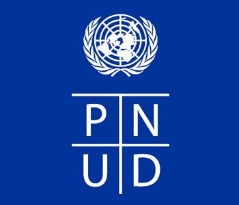 613-logo_pnud